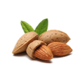 uploads almond almond PNG10 19