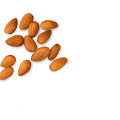 uploads almond almond PNG13 8