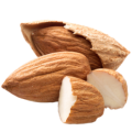 uploads almond almond PNG38 18