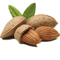 uploads almond almond PNG49 20