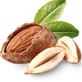 uploads almond almond PNG51 24