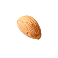 uploads almond almond PNG56 7