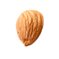 uploads almond almond PNG57 18
