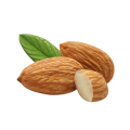 uploads almond almond PNG73 20