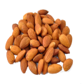 uploads almond almond PNG8 21