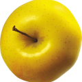 uploads apple apple PNG12412 18
