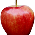 uploads apple apple PNG12429 15