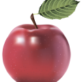uploads apple apple PNG12431 24