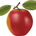 uploads apple apple PNG12452 22