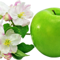 uploads apple apple PNG12467 21