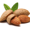 uploads almond almond PNG11 14