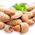 uploads almond almond PNG19 11