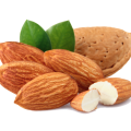 uploads almond almond PNG6 25
