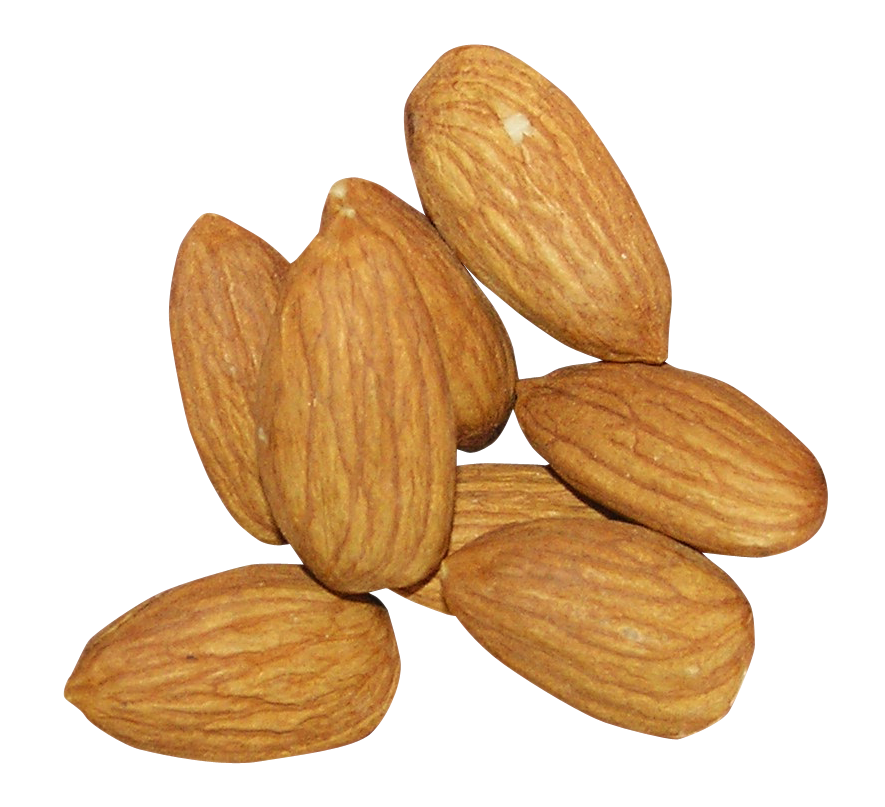 uploads almond almond PNG74 3