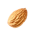 uploads almond almond PNG76 25