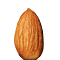 uploads almond almond PNG9 13