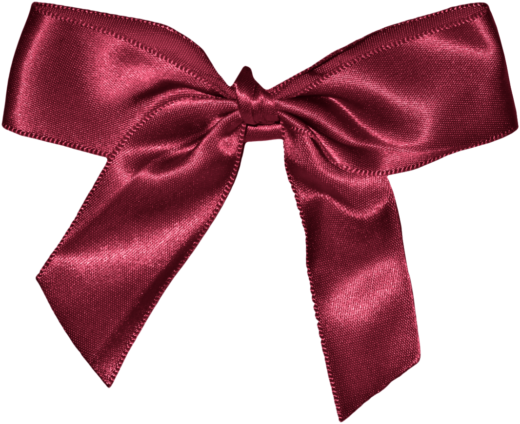 uploads bow bow PNG10110 3
