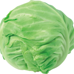uploads cabbage cabbage PNG8779 25