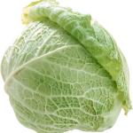 uploads cabbage cabbage PNG8783 24