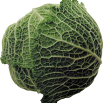 uploads cabbage cabbage PNG8810 25
