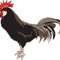 uploads cock cock PNG19933 13