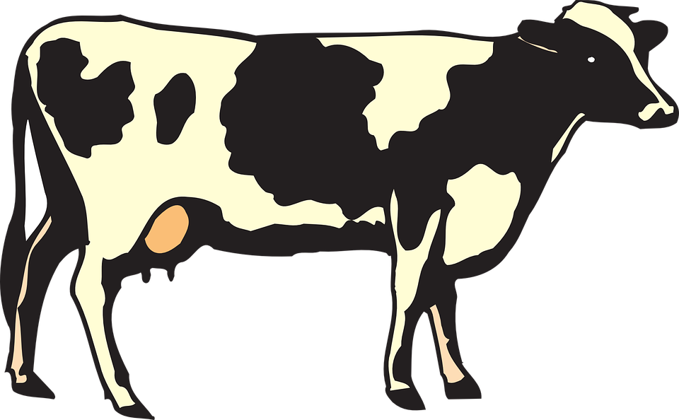 uploads cow cow PNG50597 24