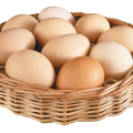 uploads egg egg PNG24 61