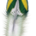 uploads feather feather PNG12948 8