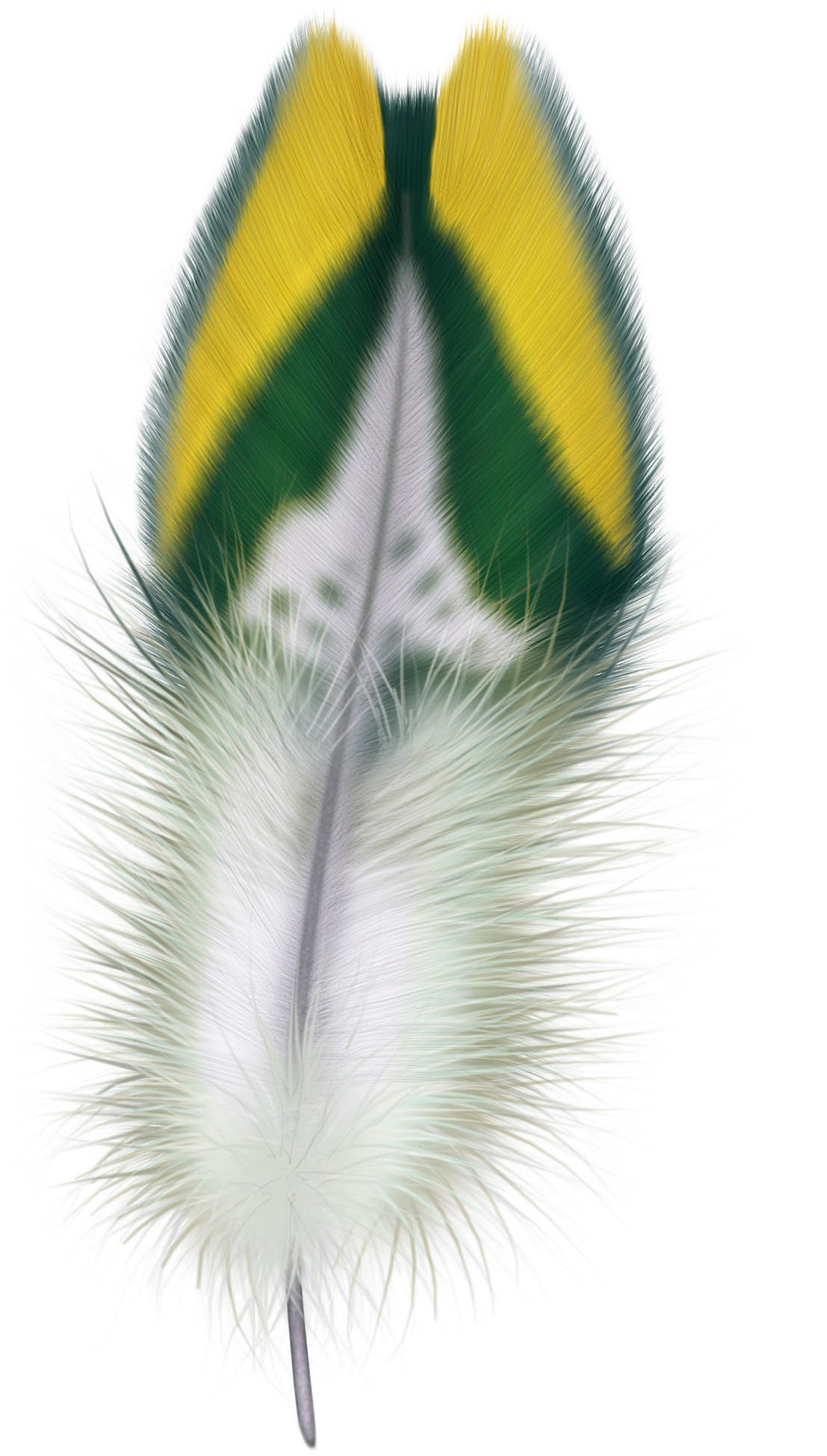 uploads feather feather PNG12948 5