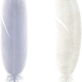uploads feather feather PNG12955 11