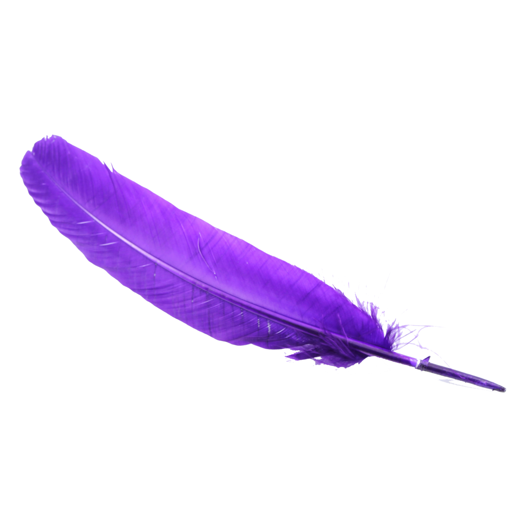 uploads feather feather PNG12986 3