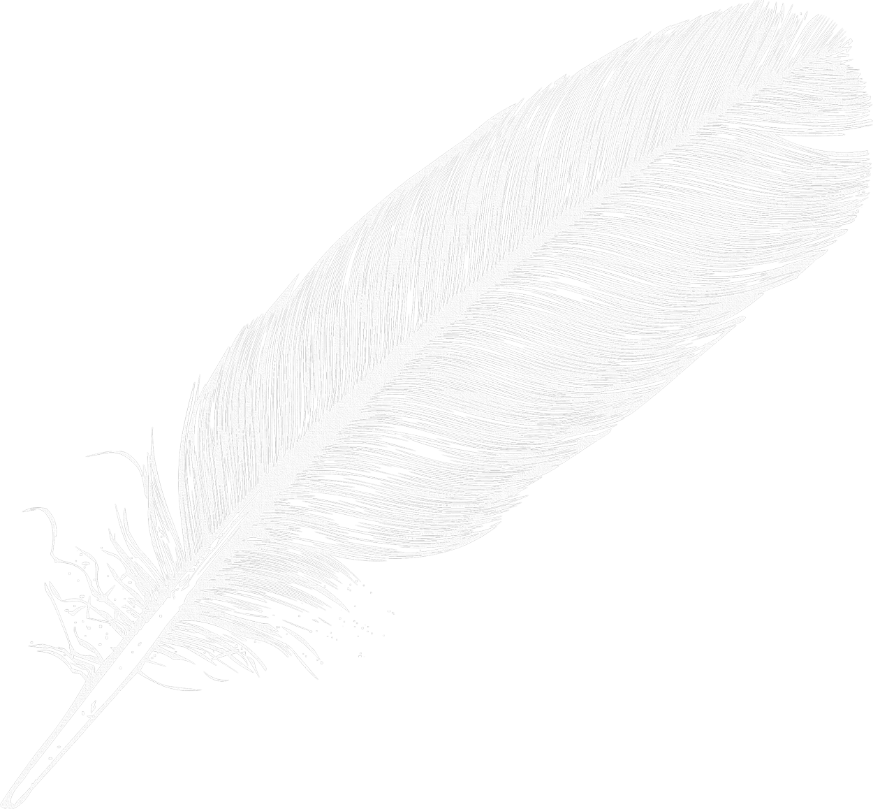 uploads feather feather PNG12991 3