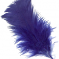 uploads feather feather PNG12993 13