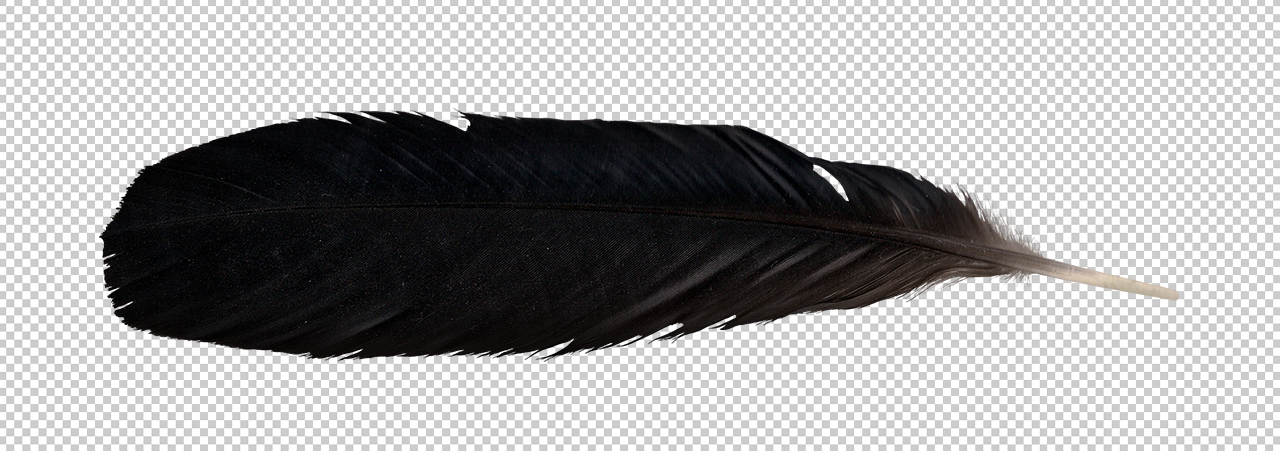 uploads feather feather PNG12995 3