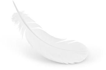 uploads feather feather PNG12999 3