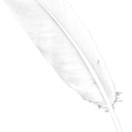 uploads feather feather PNG13002 6