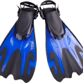 uploads flippers flippers PNG37433 17