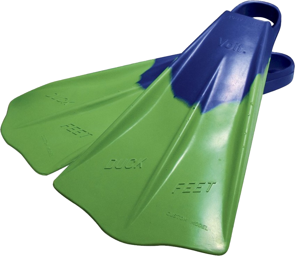 uploads flippers flippers PNG37447 24