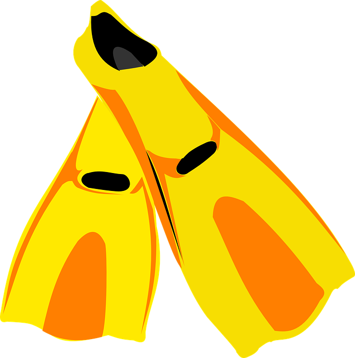 uploads flippers flippers PNG37462 25