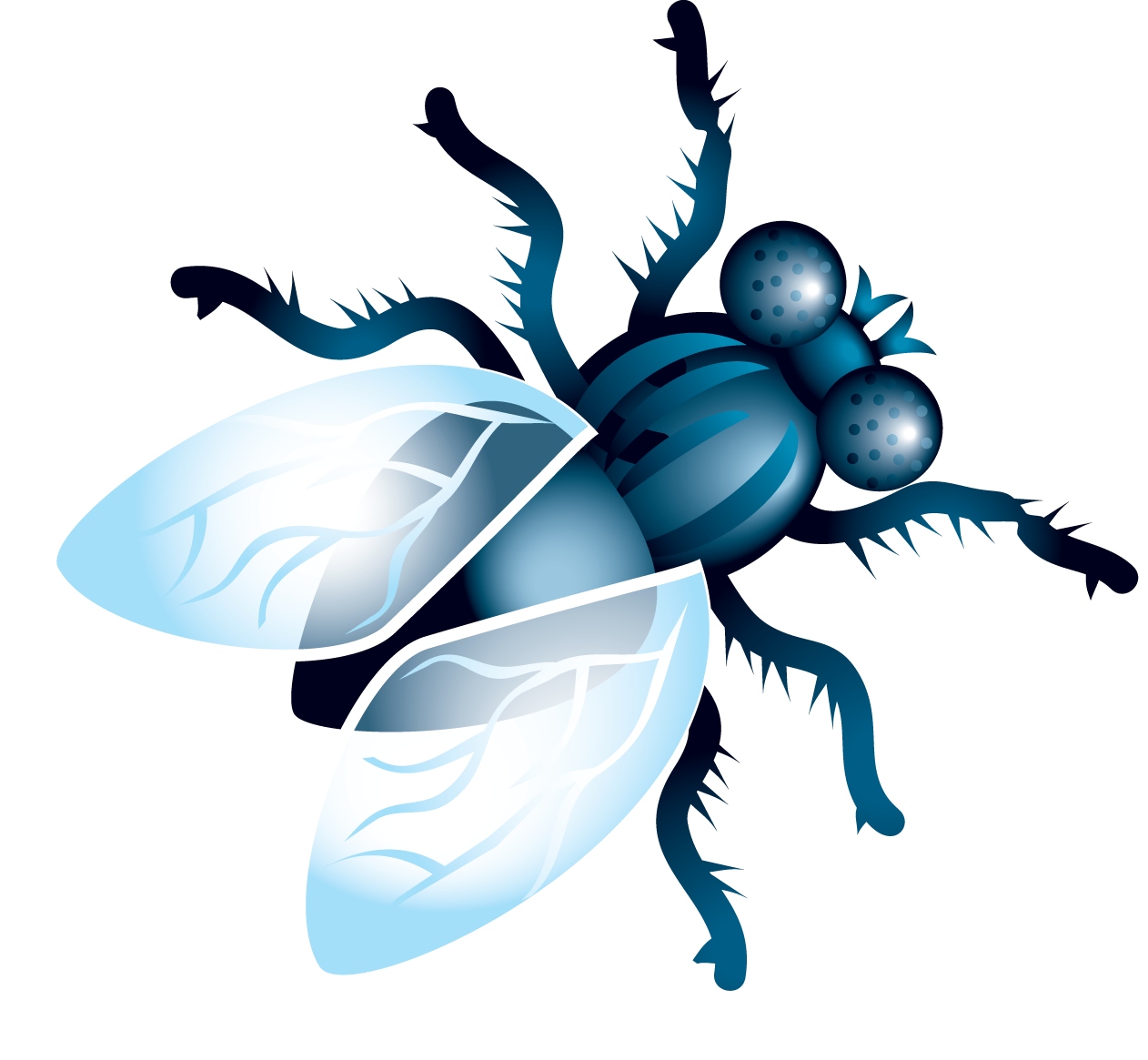 uploads fly fly PNG3957 24