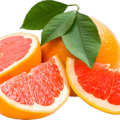 uploads grapefruit grapefruit PNG15236 18
