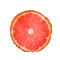 uploads grapefruit grapefruit PNG15237 17
