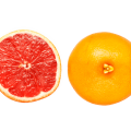uploads grapefruit grapefruit PNG15254 24