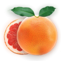uploads grapefruit grapefruit PNG15260 12