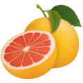 uploads grapefruit grapefruit PNG15263 23
