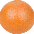 uploads grapefruit grapefruit PNG15264 7