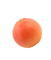 uploads grapefruit grapefruit PNG15270 3