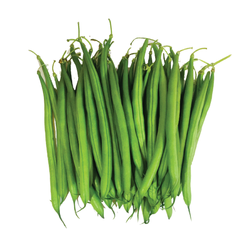 uploads green bean green bean PNG20 5