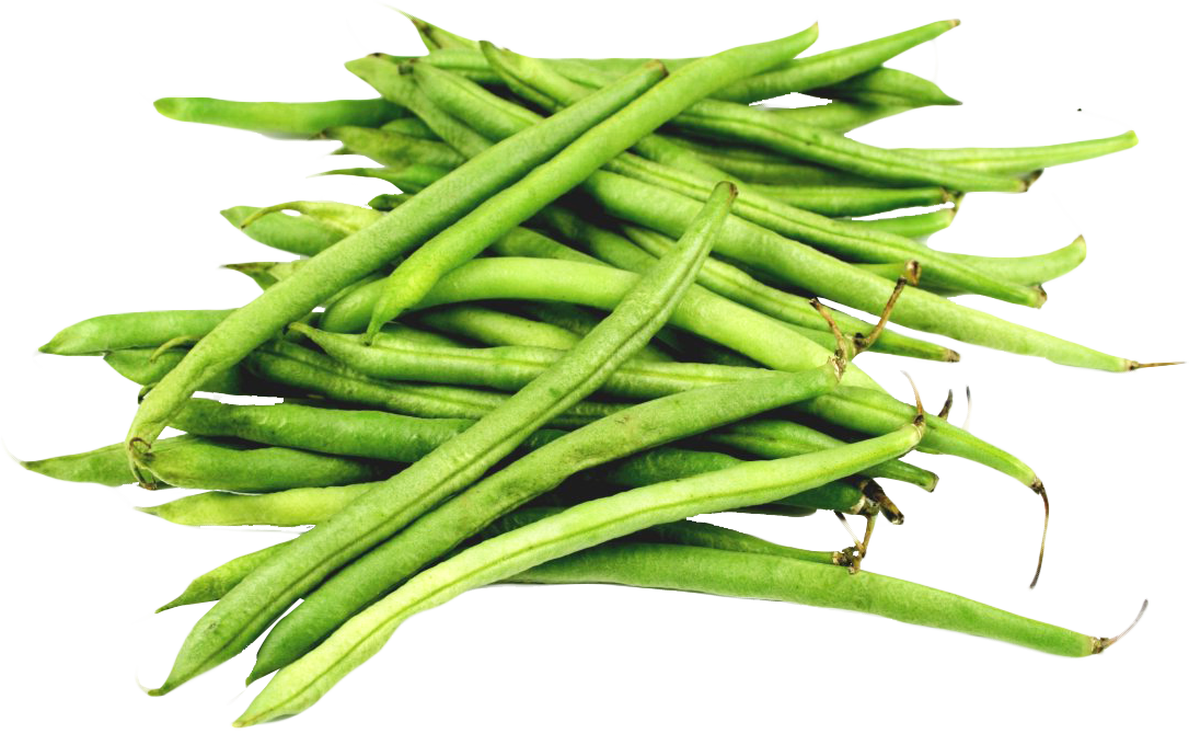 uploads green bean green bean PNG27 3
