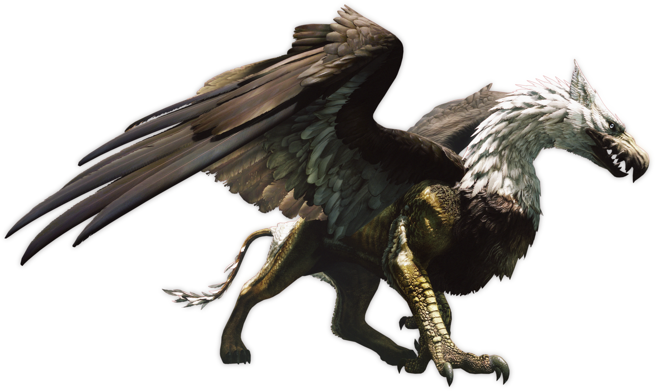 uploads griffin griffin PNG2 3